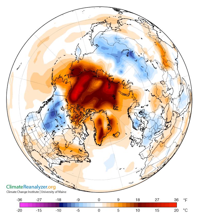 Arctic temperate map