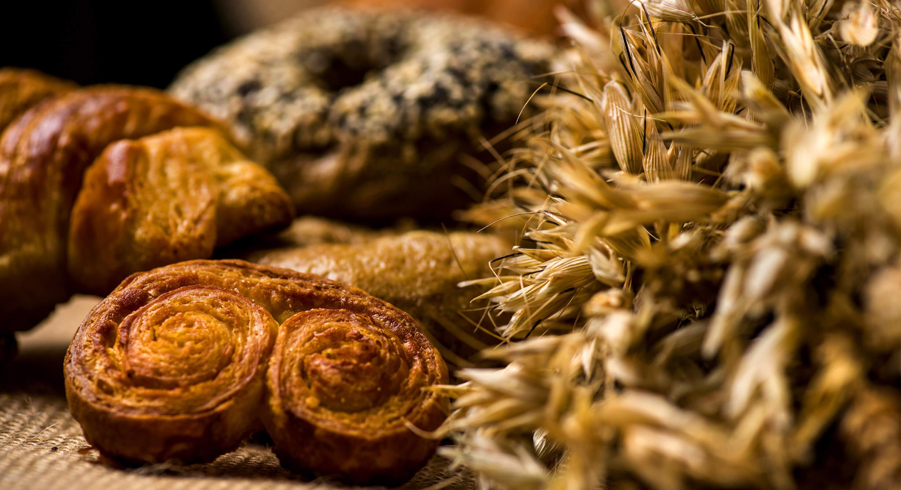 Bread-and-grain2