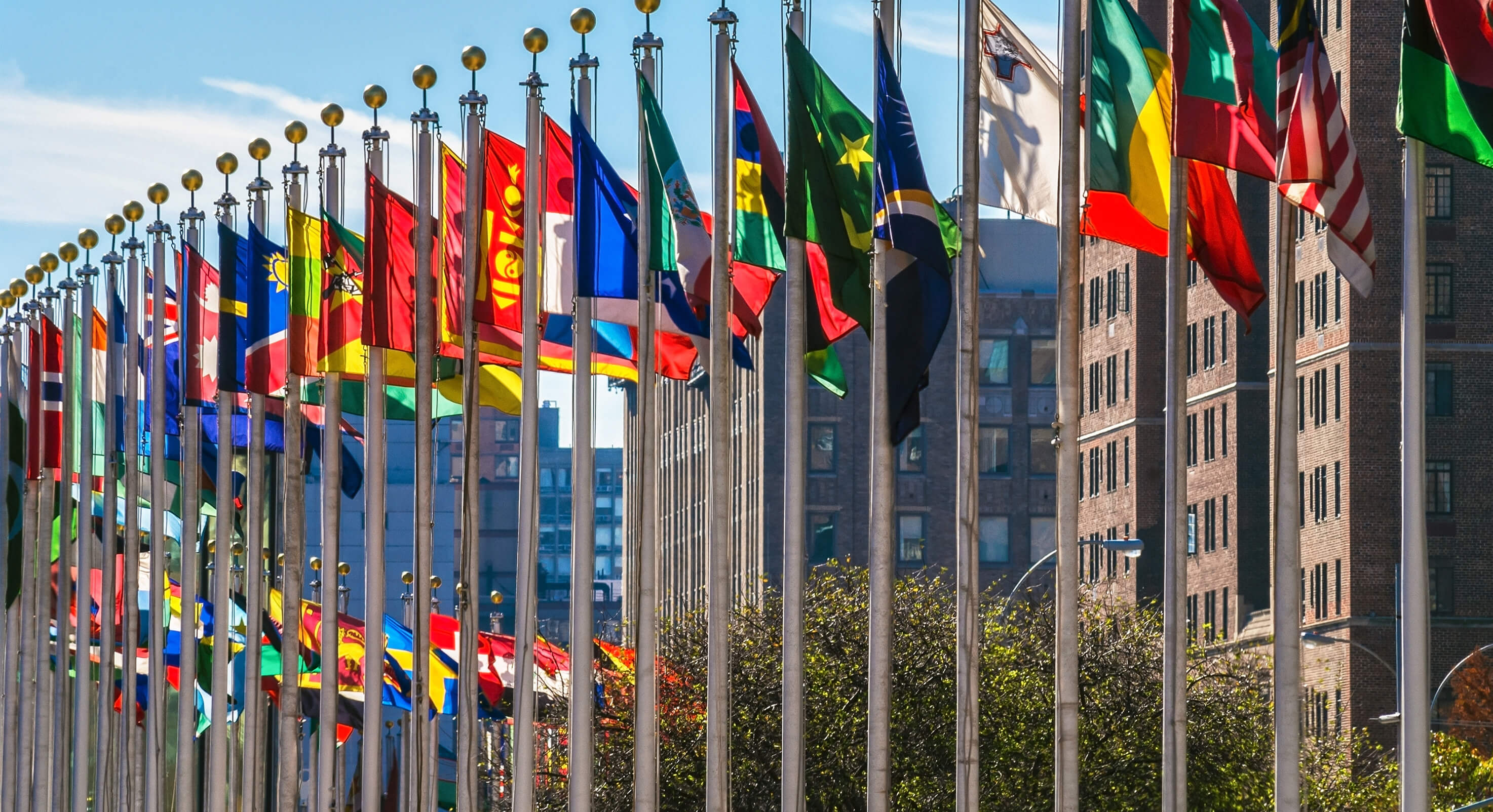 United-Nations-flags-1