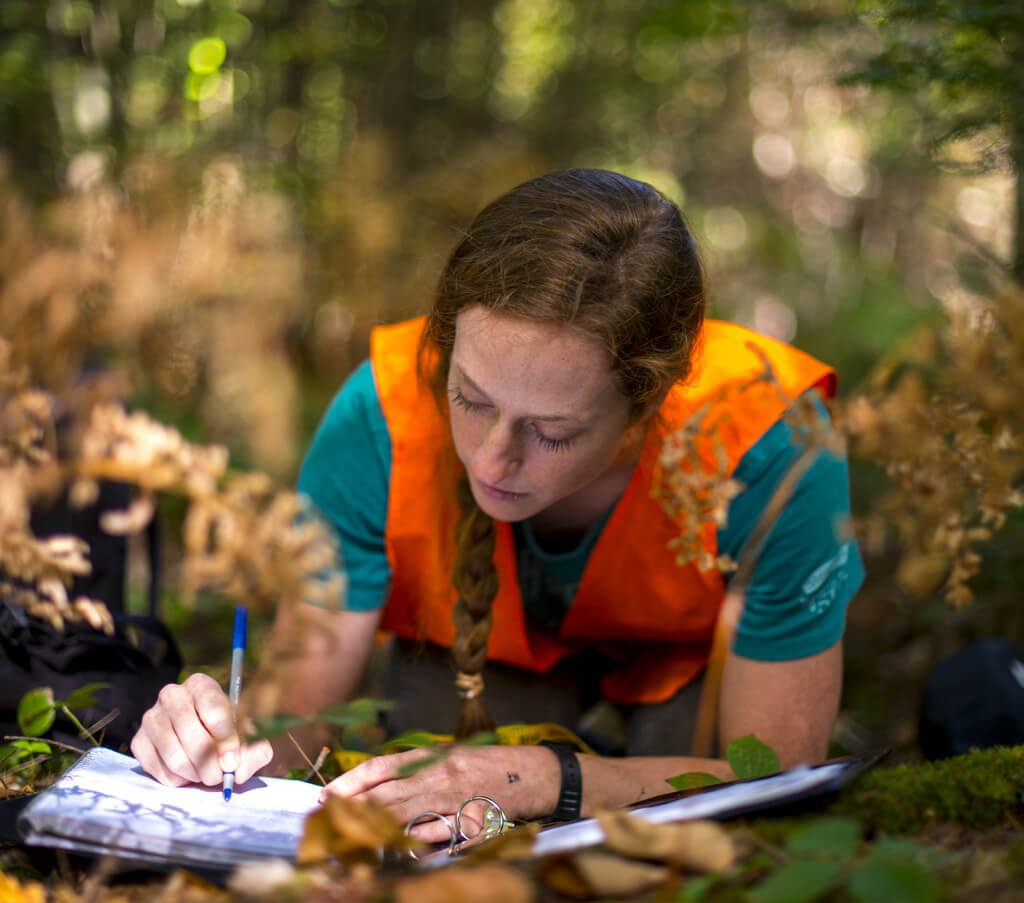 Allison Brehm working in a forest