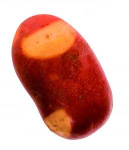 Pinto gold potato