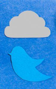 Twitter bird and storm cloud art