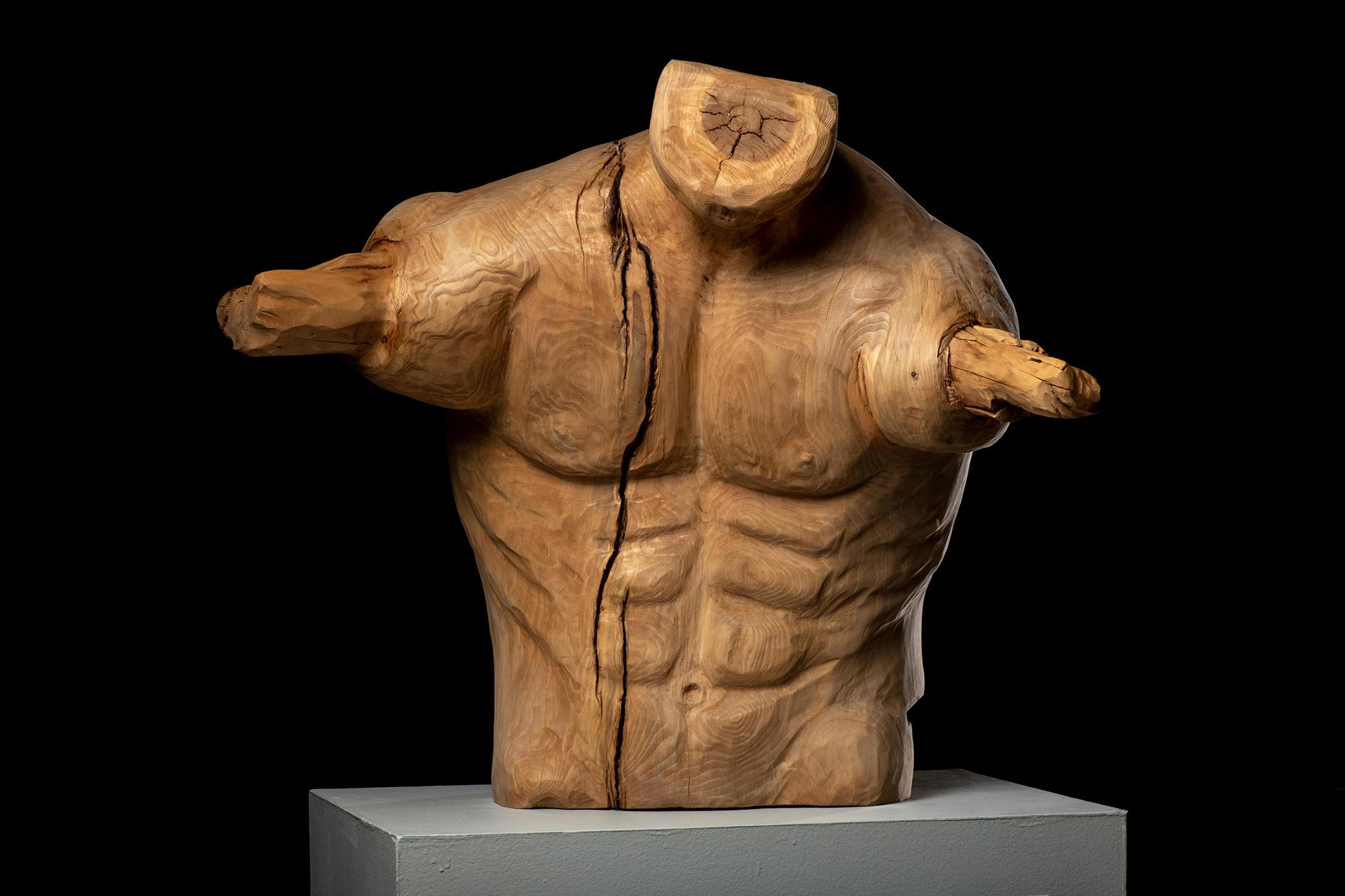 Natural Limbs: The man by Deborah Heyden [Wood Sculpture, 2017]