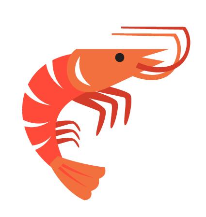 shrimp graphic