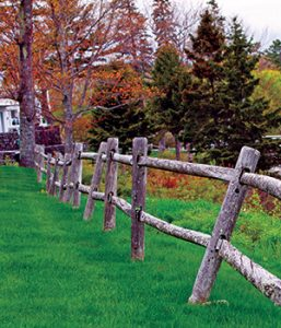 Rural Maine