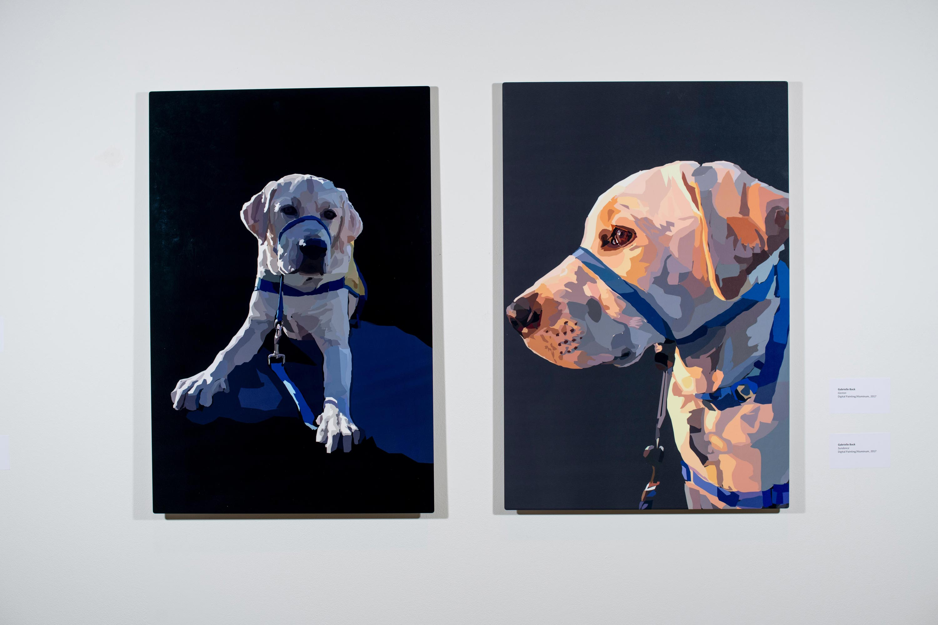 (from left to right) Gaston by Gabrielle Bock, Sundance by Gabrielle Bock [Digital Painting/Aluminum, 2017]